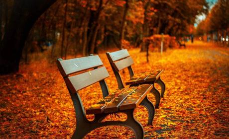 Uciekłeś w jesień